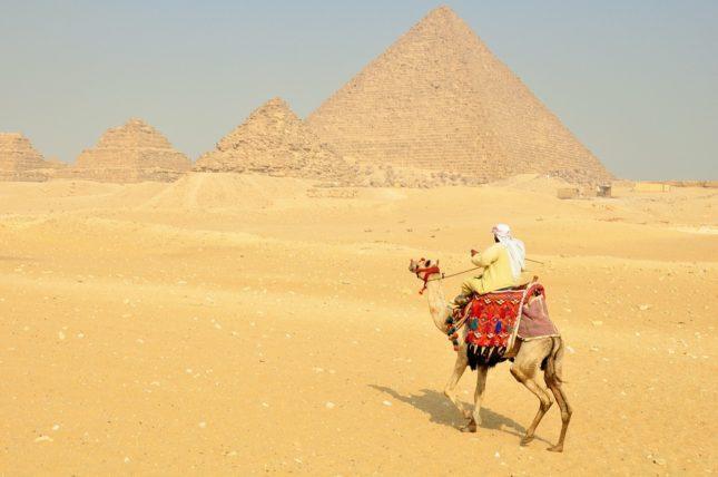 ピラミッド ラクダ